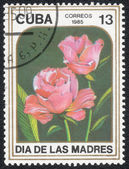 """Stamp printed in CUBA, """"Garden flowers"""" — Stock Photo"""