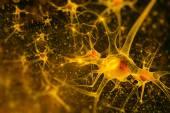 Digital illustration neurons — Stock Photo