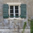 Window with open green shutters and climbing vines. close-up — Stock Photo #55682369