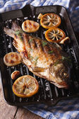 Fish carp with lemon and onion on grill pan, vertical — Stockfoto