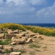 Archaeological excavations in Cyprus. Sea View. — Stock Photo #72409841