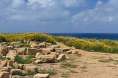 Archaeological excavations in Cyprus. Sea View. — Stock Photo