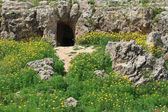 Archaeological excavations in Cyprus, Paphos. — Stock Photo