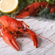 Boiled crayfish on a table close up. Horizontal — Stock Photo #75275951