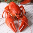 Boiled crayfish on a table close up. vertical — Stock Photo #75275953