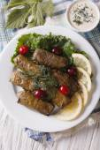 Delicious homemade dolma with lemon on a plate. vertical top vie — Stok fotoğraf