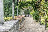 English garden in autumn — Stock Photo
