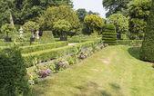 Stor park med växter och träd — Stockfoto