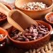Dried broad beans in the bowl — Stock Photo #60994409