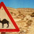 Road sign - camel and corral for camels. — Stock Photo #77276032