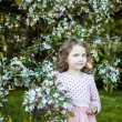 Beautiful blonde blue-eyed girl in a flowering apple orchard — Stock Photo #73606167