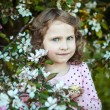 Beautiful blonde blue-eyed girl in a flowering apple orchard — Stock Photo #73606169