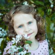 Beautiful blonde blue-eyed girl in a flowering apple orchard — Stock Photo #73606211