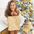 Portrait of happy young woman with shopping bags near christmas — Stock Photo #59555363