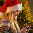 Profile portrait of happy teenager girl in santa hat writing sms — Stock Photo #59914957