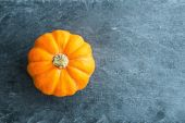 Closeup on pumpkin on stone substrate — Stock Photo