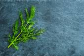 Closeup on dill on stone substrate — Stock Photo