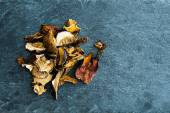 Closeup on dried mushrooms on stone substrate — Stock Photo