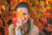 Portrait of happy young woman hiding behind autumn leafs in fron — Stock Photo