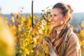 Portrait of happy young woman in autumn vineyard — Stock Photo