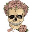 Colorfull illustration. Skull and roses — Stock Photo #63162139