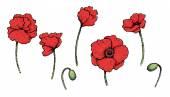 Set of bright artistic vector poppies — Stock vektor