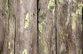 Old weathered grunge wooden board — ストック写真