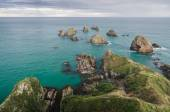 Nugget point, new zealand — Stock Photo