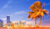 City of Miami Florida, night skyline palm trees and moving traffic — Fotografia Stock