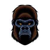 Gorilla Head — Stock Vector