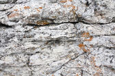 Natural stone background rock — Stock Photo