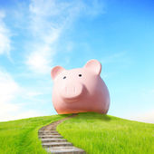 Pink piggy bank and up stairs — Stock Photo