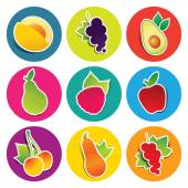 Set of fruit icons in the circles — Stock Vector