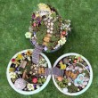 Постер, плакат: Birds eye view of fairy garden in a flower pot