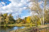 Autumn landscape 85 — Stock Photo