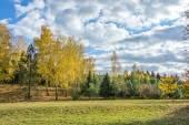 Autumn landscape 86 — Stock Photo