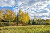 Autumn landscape 87 — Stock Photo