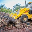 Bulldozer working at demolition site, cleaning debris of bricks and walls — Stock Photo #56163061