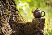 明るいグリーのコケと古い木の切り株に中国粘土ティーポット — ストック写真