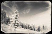 Snow mountain — Stock Photo