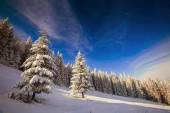 雪の山 — ストック写真