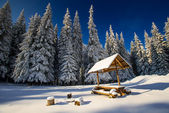 Magical winter snow covered tree — Stockfoto
