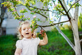 Child at the blossom trees — Stock Photo