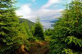 Mountain valley landscape — Stock Photo