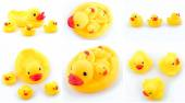 Rubber ducks — Stock Photo