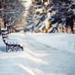 Winter park — Stok fotoğraf #54998773