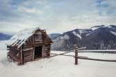 House in Carpathians — Stock Photo