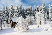 Beautiful wooden house in a winter sunny day  — 图库照片
