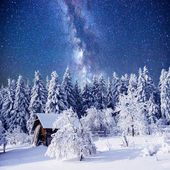Enchanting winter tale — Stock Photo