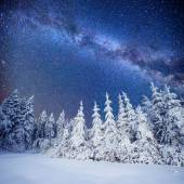 Dairy Star Trek in the winter woods — Stock Photo
